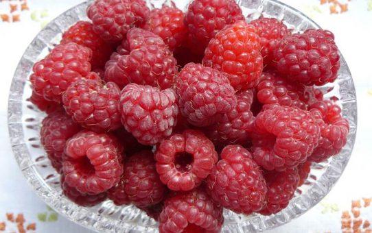 Owoce na uroczystym stole: jak je podać?